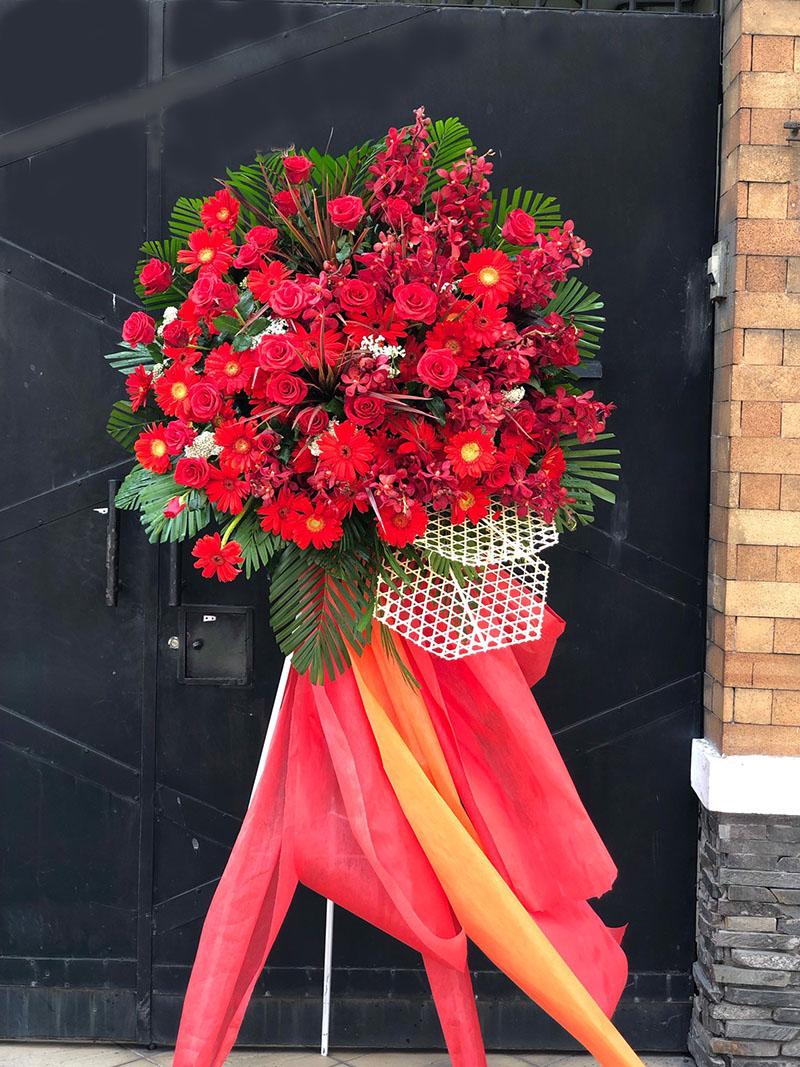 Hoa Hồng Môn đỏ - Hoa tặng khai trương cao cấp