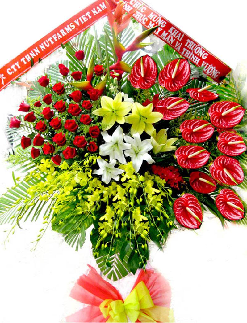 Những loại hoa màu đỏ tặng khai trương