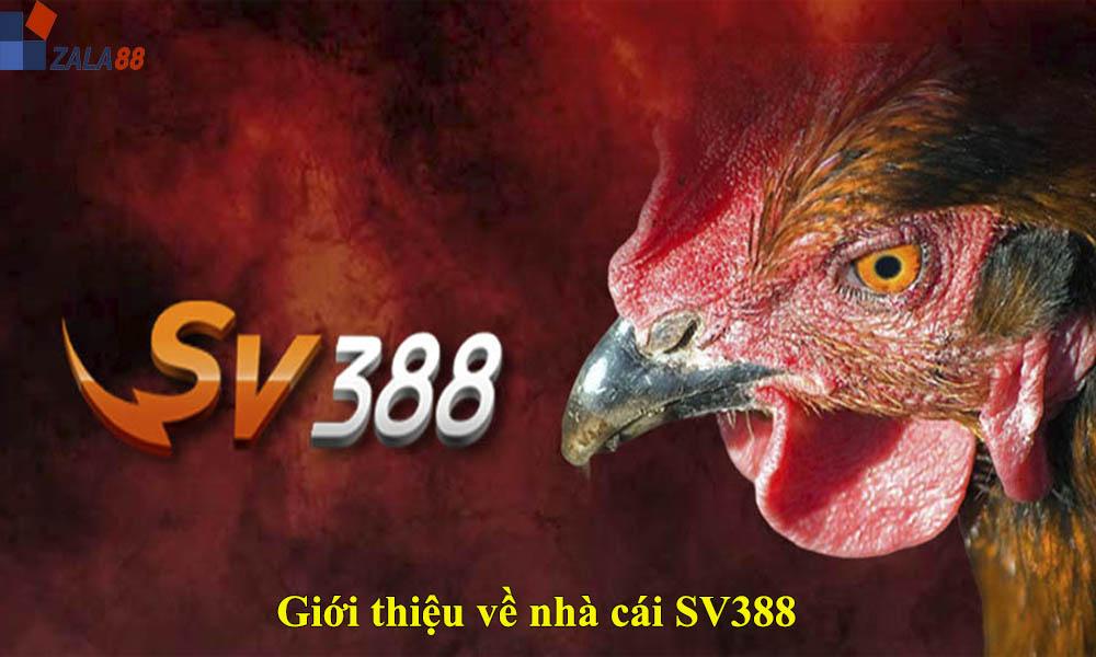 Giới thiệu về nhà cái SV388
